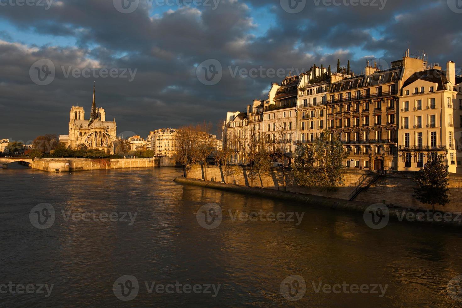 kathedrale notre-dame, paris, frankreich foto