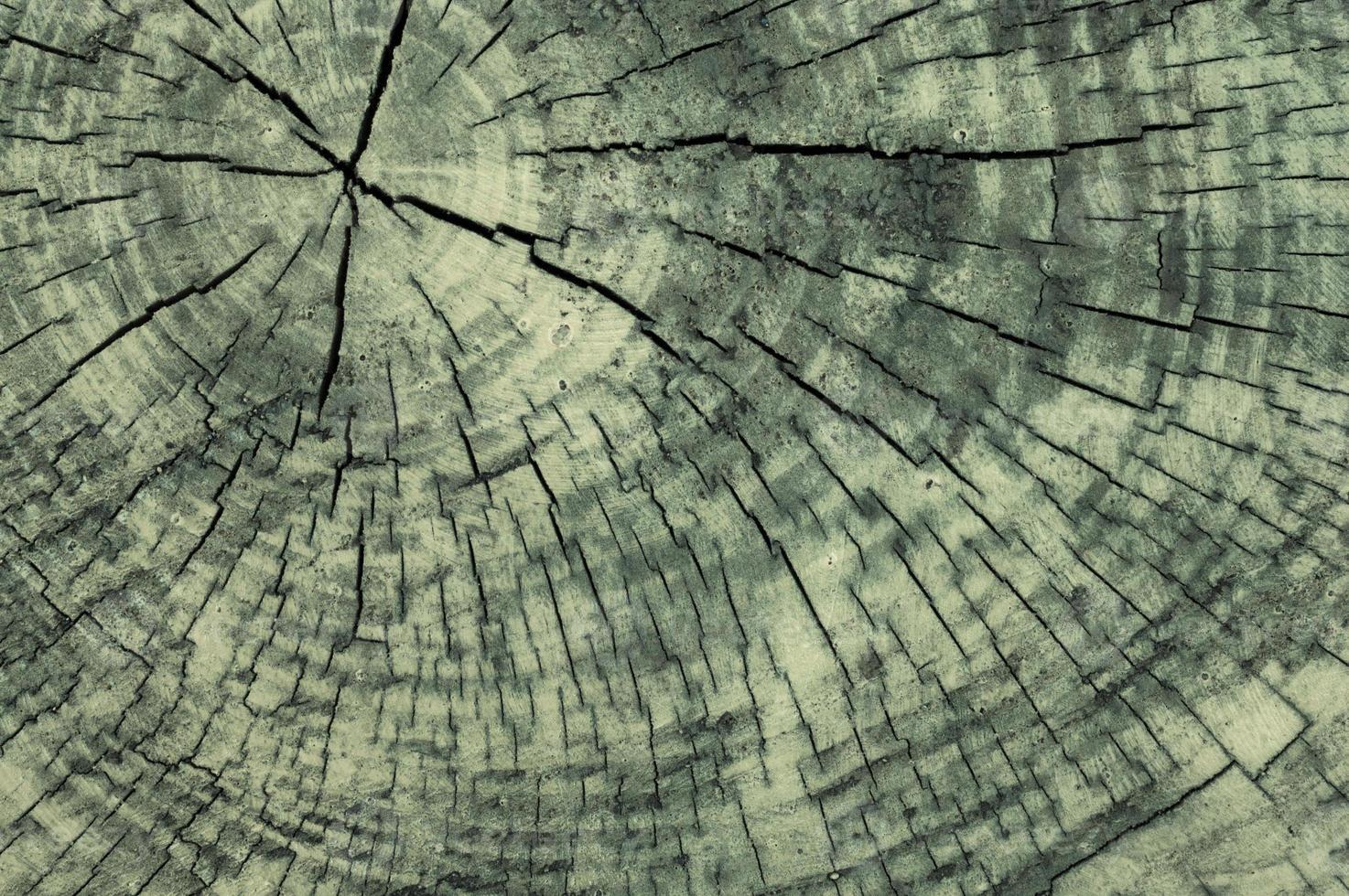 Holz Hintergrund Textur. grau lackiertes Holz. foto
