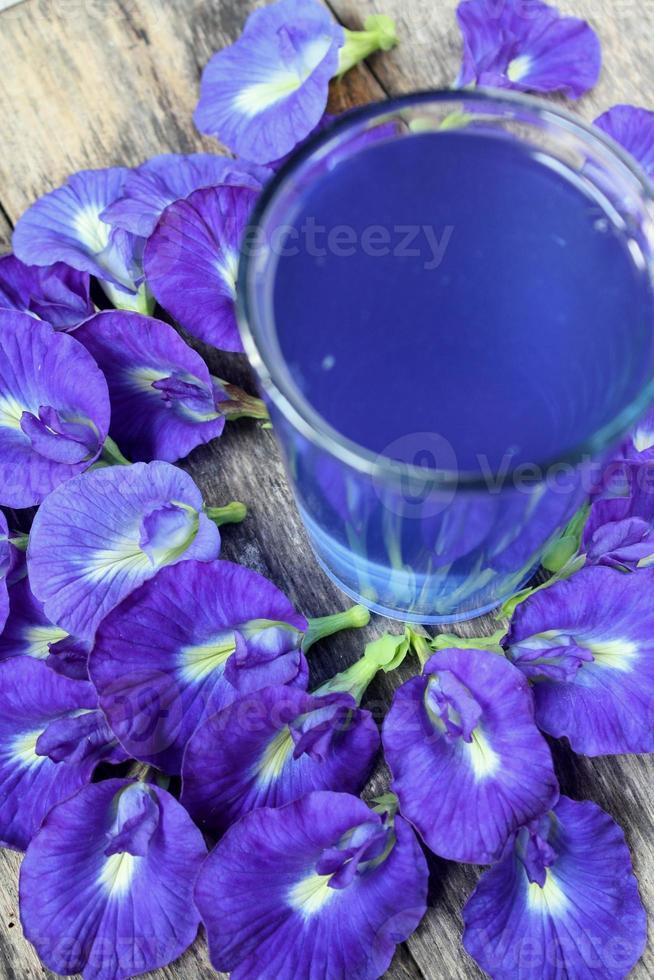 Schmetterlingserbsengetränk oder Bluechai foto
