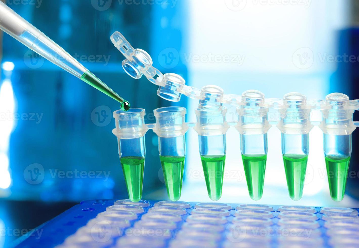 Proben für die DNA-Amplifikation foto