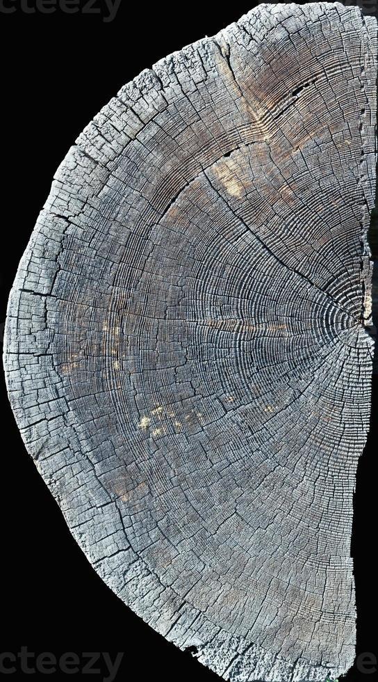 altes Holz foto