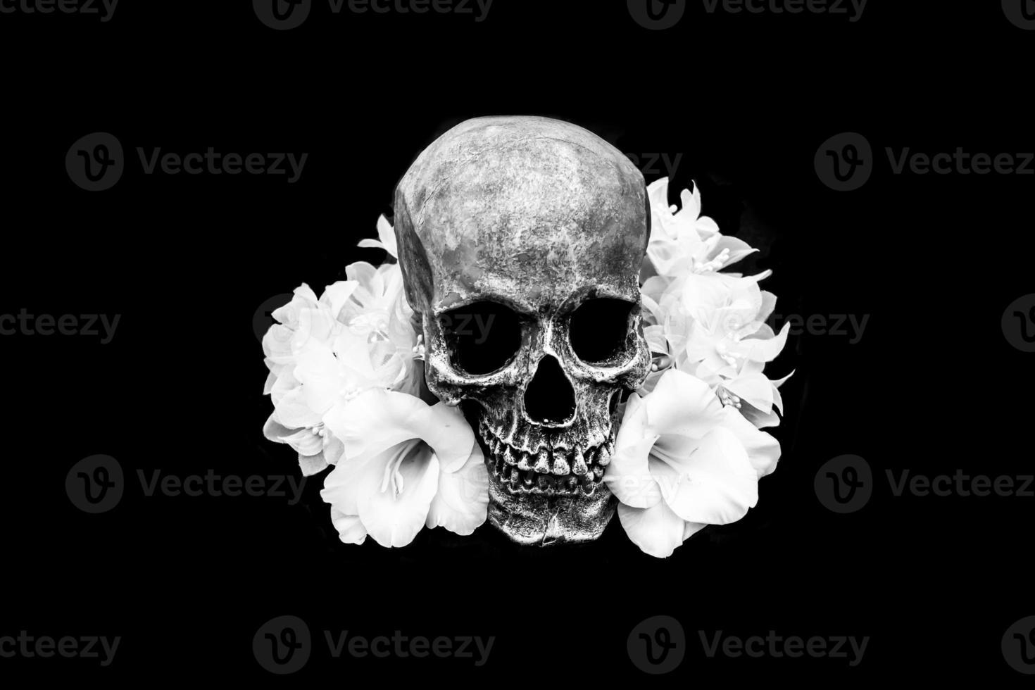 menschlicher Schädel weiße weiße Blumen foto