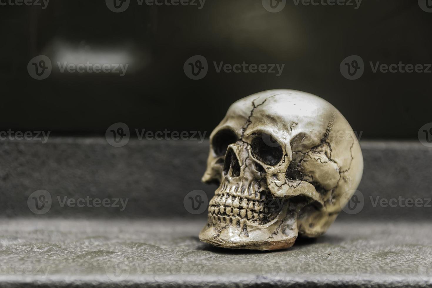 Schädel oder Skelett der menschlichen Fotografie foto