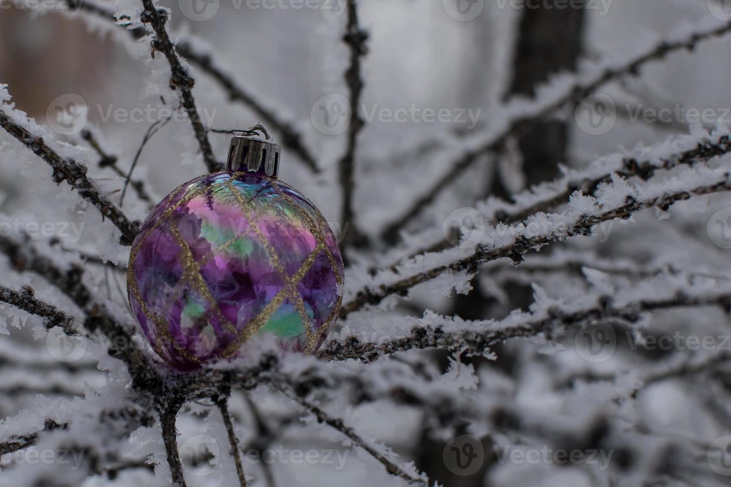 Weihnachtsbaumspielzeug auf einem schneebedeckten Ast foto