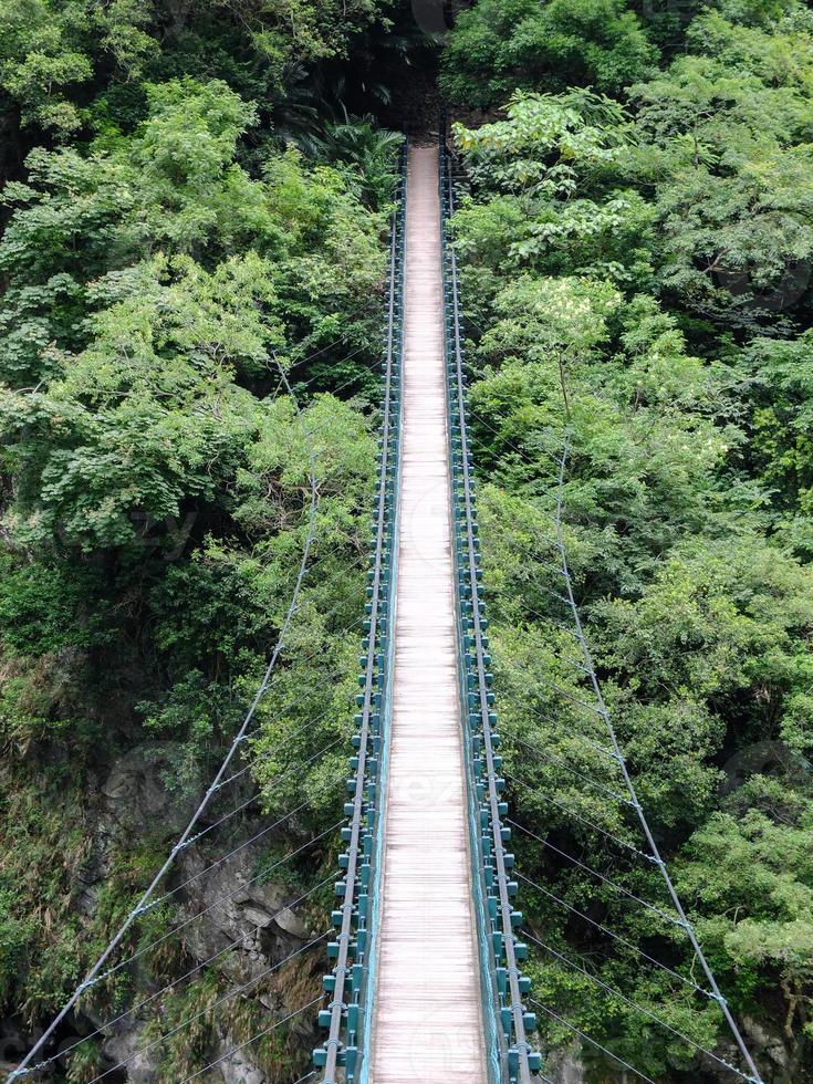 Brücke in den Dschungel foto