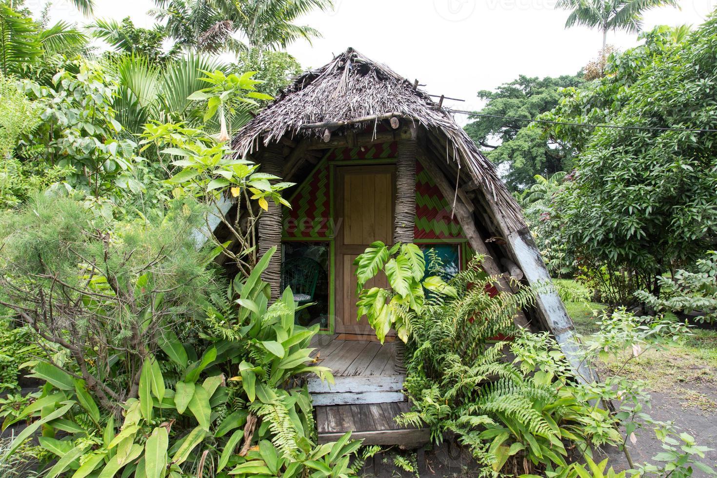 Dschungelbungalow foto
