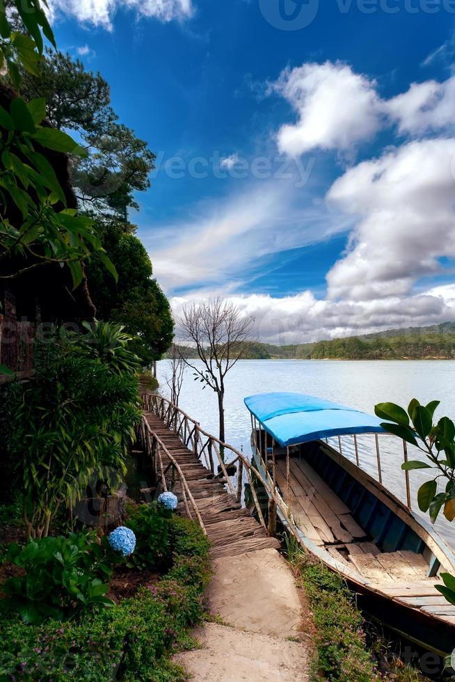 Dschungel von Vietnam foto