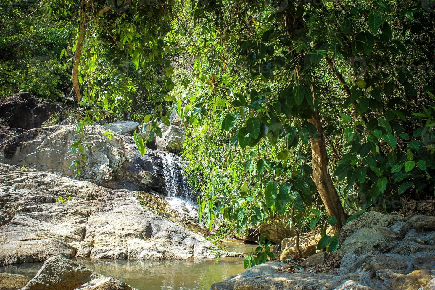 Wasserfall mit Pool im tropischen Dschungel, na muang, koh samui foto