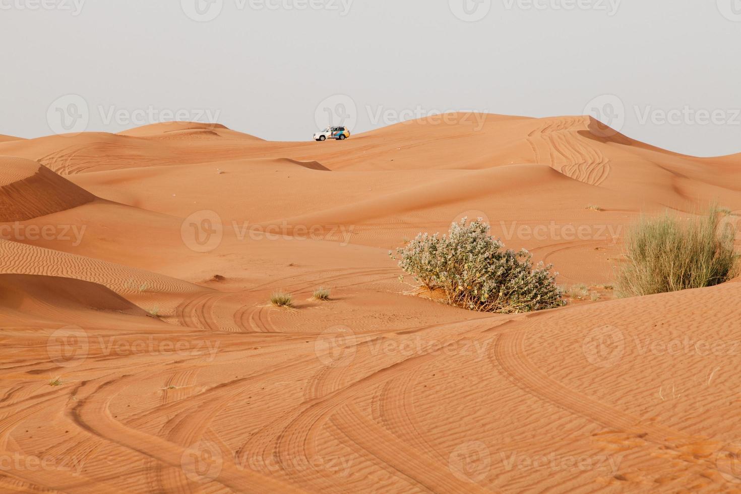 arabische Wüste foto