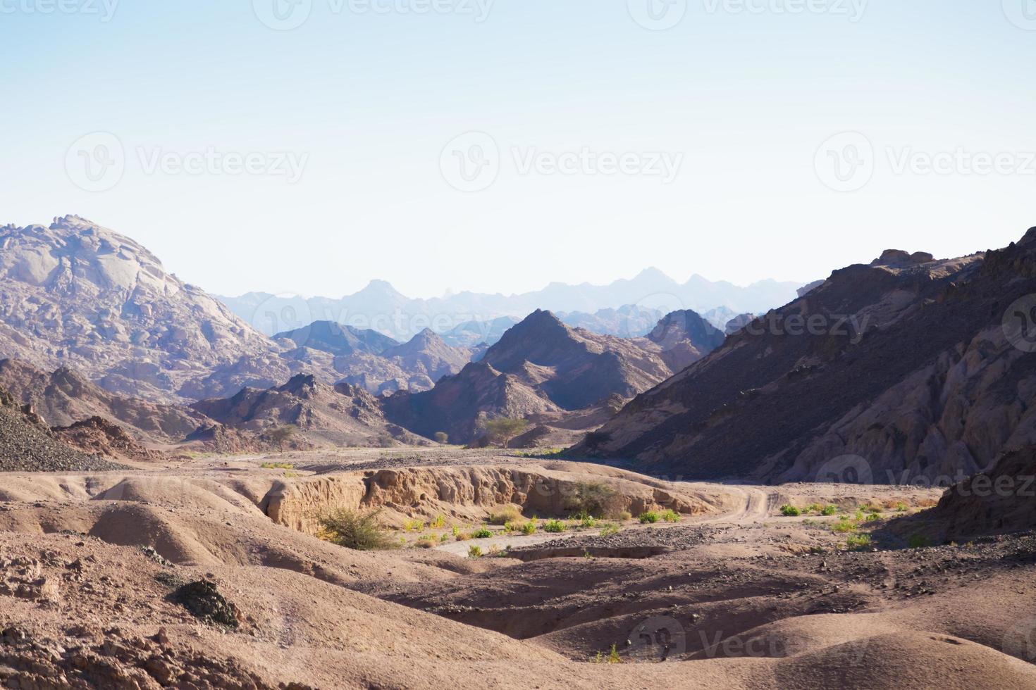 Sinai Wüste foto