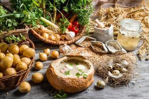 Blick auf eine frisch zubereitete saure Suppe foto