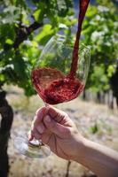 Rotwein wird in Glas gefüllt foto