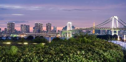 Regenbogenbrücke und Tokio Skyline von Odaiba, Nachtansicht
