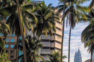 Petrowas Zwillingstürme zwischen Gebäuden und Kokospalmen foto