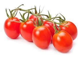 Zweig rote Kirschtomaten foto