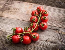 Zweig der Tomaten auf einem hölzernen Hintergrund