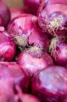 Bio-Bauernmarkt frisches buntes Obst und Gemüse foto