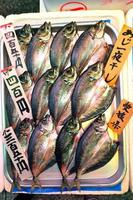 Fisch auf einem japanischen Markt ausgestellt foto