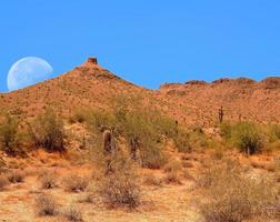 Wüstenmond foto