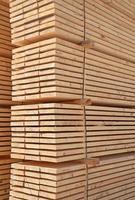 frische Holznieten foto