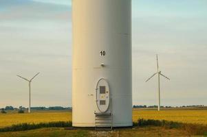 Windmühle, Gruppe ausgerichteter Windmühlen zur Alternative zur Stromerzeugung