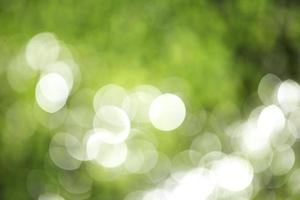 grünes Bokeh foto