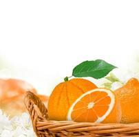 Orangen foto