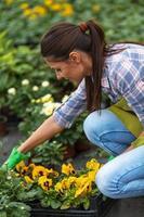 junge Frau im Gewächshaus im Garten.