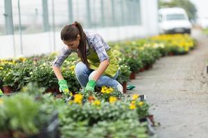 junge Frau im Gewächshaus im Garten. foto