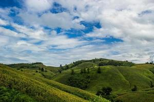 Landwirtschaft auf Hügel foto