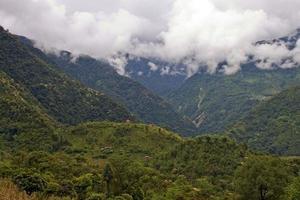 Regenwald, der Berge in Sikkim bedeckt