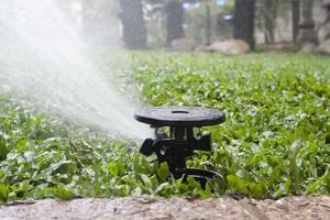 Sprinkler gießt das Gras foto