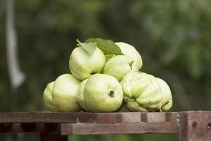 frische Gesundheit Guavenfrucht foto