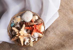 Muscheln in einen Korb auf einen Seidenstoff legen foto