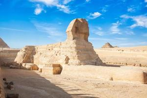 tolle Sphinx foto