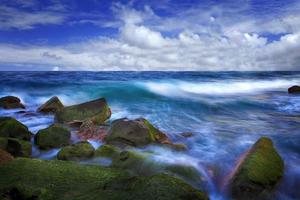 die weiche Welle
