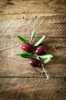 Oliven auf Zweig foto