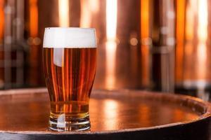 frisches Bier. foto
