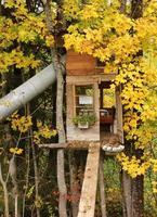 kleines Baumhaus mit Bett und Rutsche foto