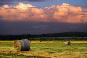 Heuballen auf dem Feld nach der Ernte, Ungarn