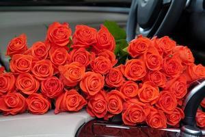 frisch rote Rosen foto