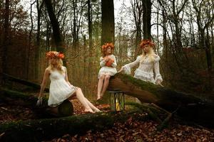 Herbstfee fünf foto