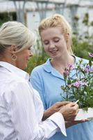 Mitarbeiter, die weiblichen Kunden im Gartencenter Pflanzenberatung geben foto