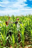 zwei junge Mädchen, die Spaß in einem grünen Maisfeld haben