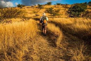 Savanne auf der Insel der Wiedervereinigung, Klettern, Wandern