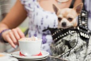 im Straßencafé foto