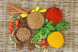 Auswahl an indischen Gewürzen und Chilis