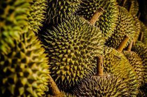 Durianfrucht die Königsfrucht foto