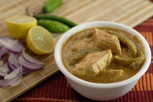 indisches Essen Hüttenkäse Paneer foto