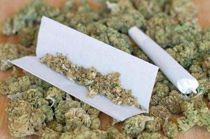 trockene Marihuana-Knospen mit Gelenk foto